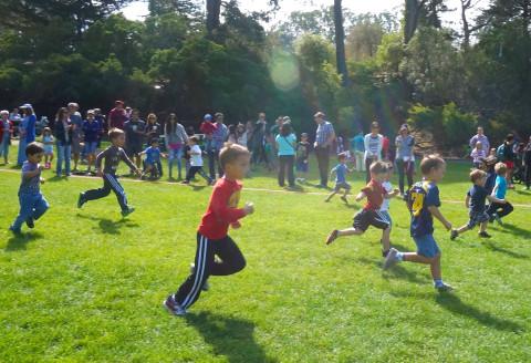 STA Annual Field Day