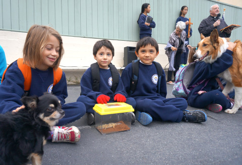 Blessing of the Animals at STA